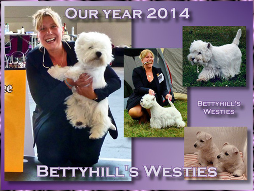 Highlights 2014 :: Bettyhill's Westies