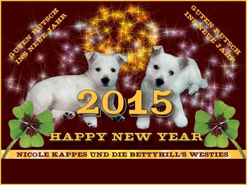 Happy New Year 2015! :: Bettyhill's Westies