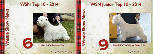 WSN Top 10 2014 :: Bettyhill's Westies